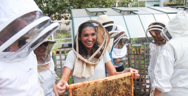 Happy woman holding a hive frame with honey bees
